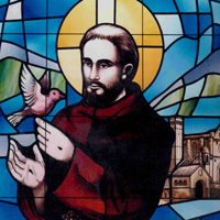St. Francis with Dove - Stained Glass Window
